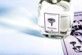 helicriss_fragrance-d9546ac7a4f2d7ffa066e396219b617b18029d5d348c40586abf1641a78220c2